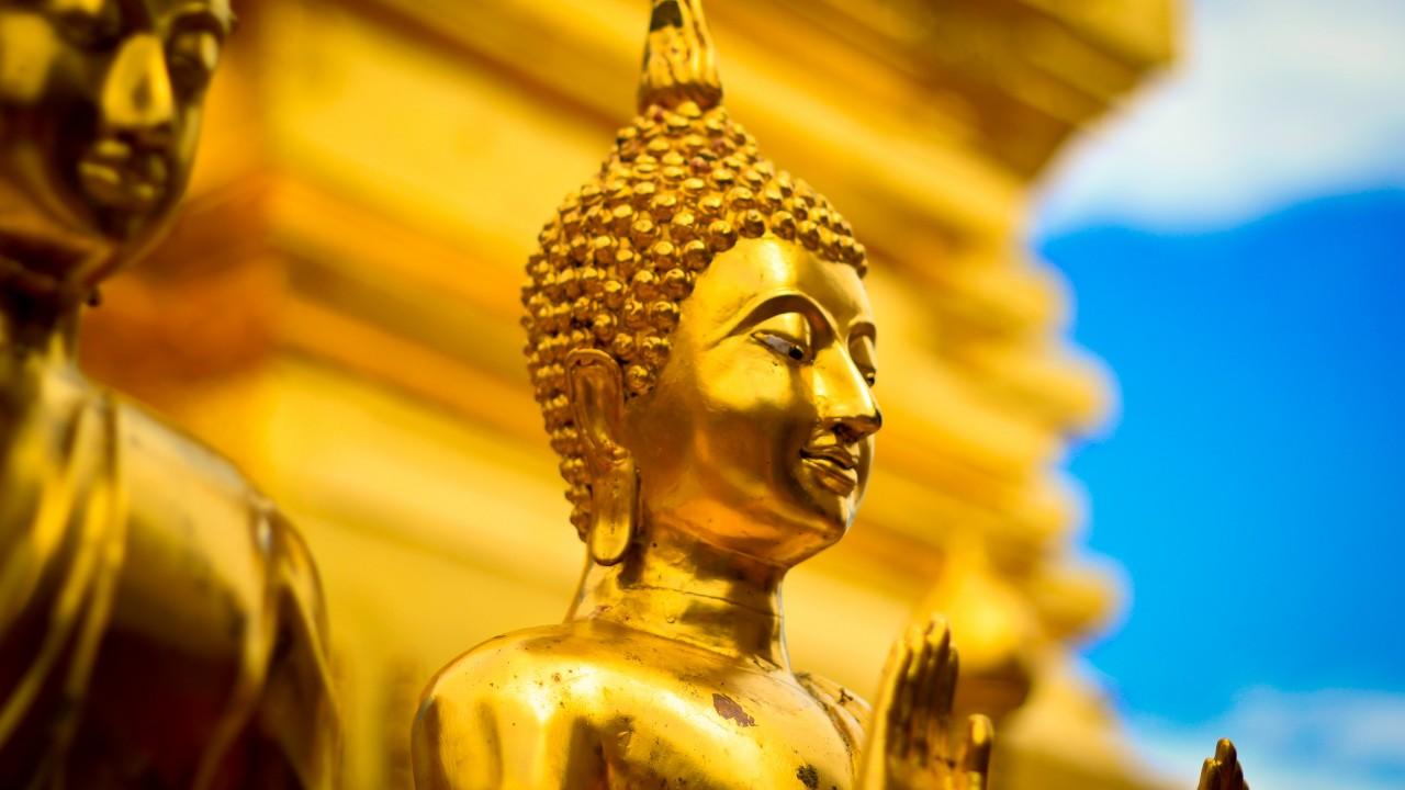 Tư duy lời Phật day trong mùa dịch bệnh Covid-19