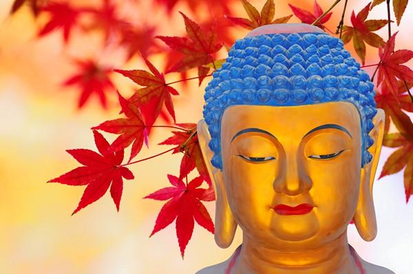 Phật dạy 10 cách gieo trồng phước đức